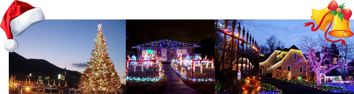 xmas flexible led copper wire string light dececorates building beautifully